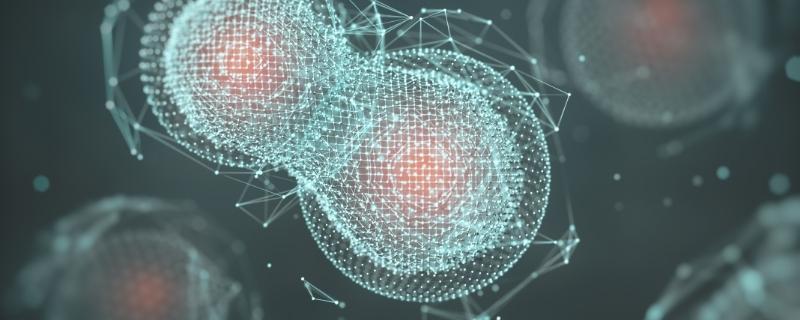 Laboratorio de Bioingeniería de Sistemas