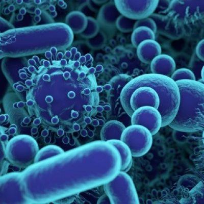 microbiologia de sistemas
