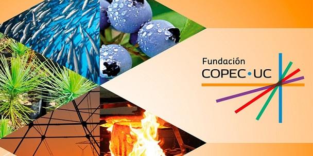 Fundación Copec UC CORTADA