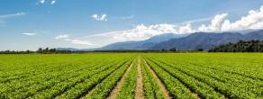 agricultura sustentablecortada